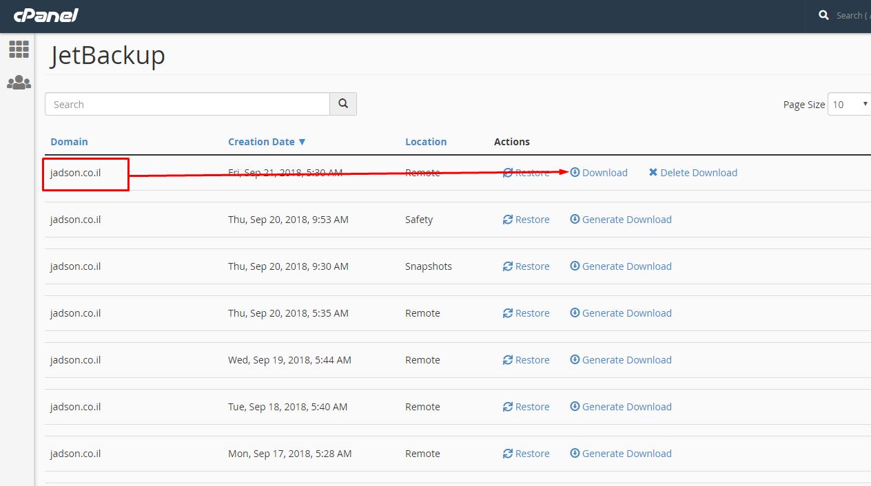 כיצד ניתן להוריד גיבוי הגדרות DNS Zone מתוך פאנל ניהול אחסון האתר